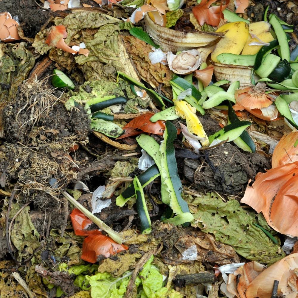 ¿Cómo hacer un compost en simples pasos?