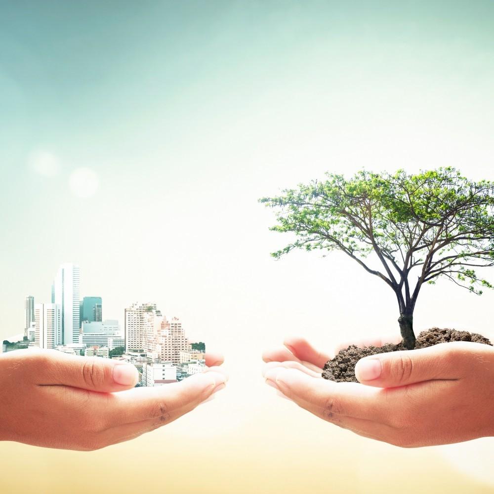¿Cuánto sabes sobre los objetivos de desarrollo sostenible?